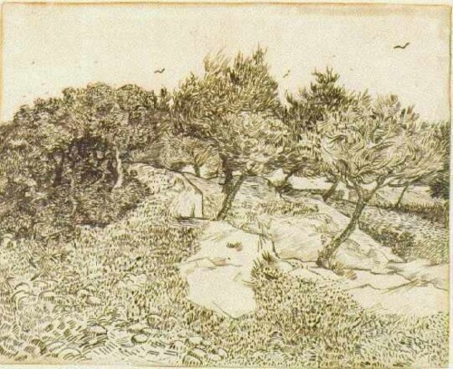 the-olive-trees-1888